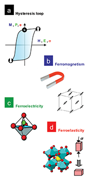 Multifunctional Ferroic Materials